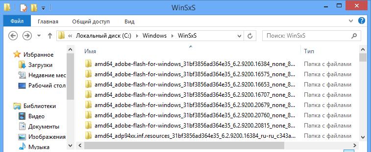 содержимое папки WinSxS